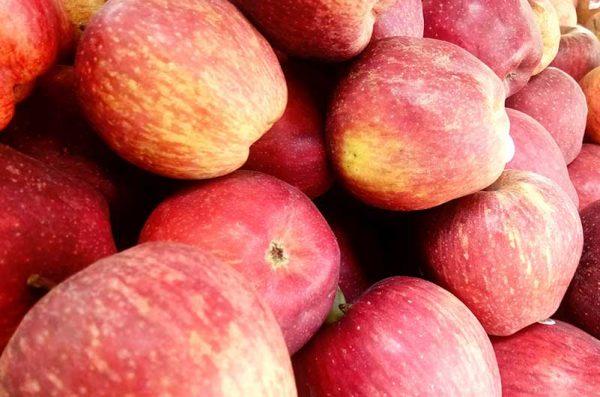Apfel-Honey-Crunch-Lage