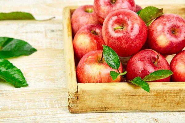 Apfel-Idared-10kg