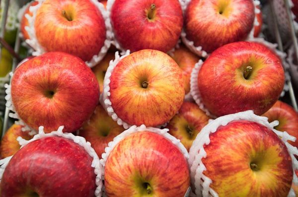 Apfel-Royal-Gala-Lage