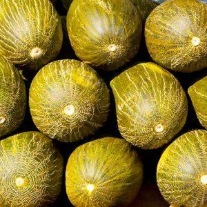 Melone-Piel-de-Sapo