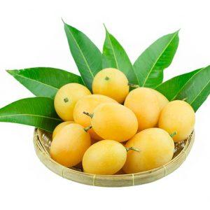 Pflaumen-gelb