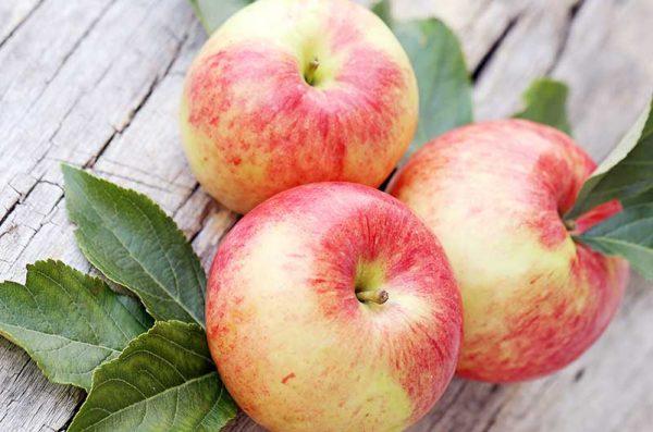 Apfel-Braeburn-10kg