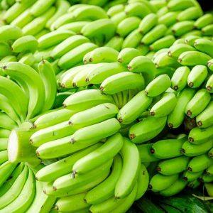Bananen-Bio