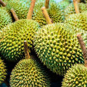 Durian-Kotzfrucht