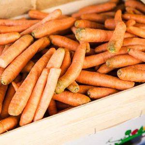 Karotten-Kiste