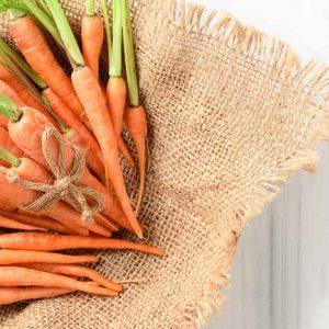 Karotten-Sack