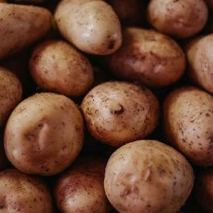 Kartoffel-Jumbo-Vorwiegend