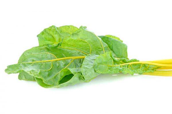 Mangold-grün