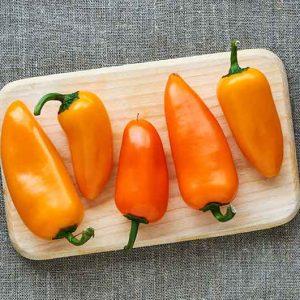 Paprika-Orange